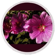 Lavatera - A Study In Pink Round Beach Towel