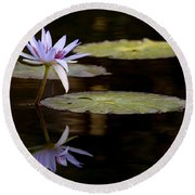 Lavendar Reflections In The Lake Round Beach Towel