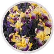 Lavender And Irises Round Beach Towel