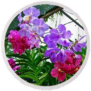 Lavender And Red Orchids At Maerim Orchid Farm In Chiang Mai-tha Round Beach Towel