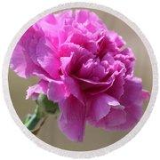 Lavender Carnation Round Beach Towel