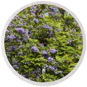 Lavender-colored Blooming Tree Round Beach Towel
