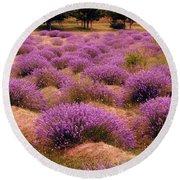 Lavender Fields 2 Round Beach Towel