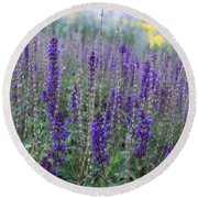 Lavender In The City Park Round Beach Towel