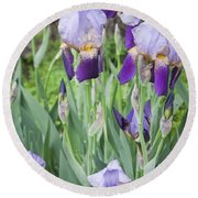 Lavender Iris Group Round Beach Towel