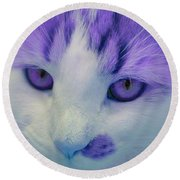 Lavender Kitten Round Beach Towel