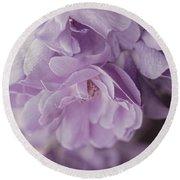 Lavender Purple Roses Rhapsody Round Beach Towel
