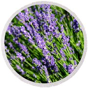 Lavender Square Round Beach Towel