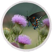 Lavender Thistle And Pipevine Swallowtail Butterfly Round Beach Towel