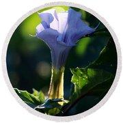 Lavender Trumpet Flower Round Beach Towel