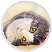 Lazy Kitty Round Beach Towel