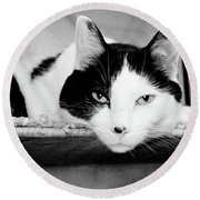 Le Cat Round Beach Towel