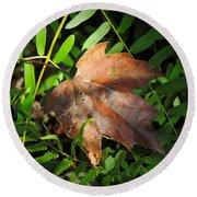 Leaf Among Ferns Round Beach Towel