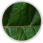 Leaf Close Up Round Beach Towel