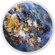 Leaf Island Round Beach Towel
