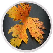 Leaf Portrait Round Beach Towel