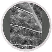 Leaf Venation With Water Beads Round Beach Towel