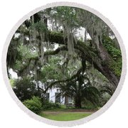Leaning Live Oak Round Beach Towel