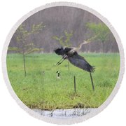 Leaping Flight Round Beach Towel