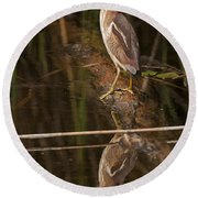 Least Bittern Pictures 17 Round Beach Towel