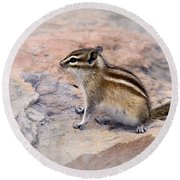 Least Chipmunk #2 Round Beach Towel