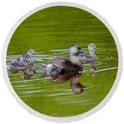 Least Grebe And Young Round Beach Towel