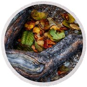 Leaves And Root Round Beach Towel