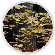 Leaves And Trees Round Beach Towel