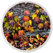 Leaves At The Levee Round Beach Towel