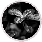 Leaves - Bw Round Beach Towel