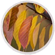 Leaves In Fall Round Beach Towel