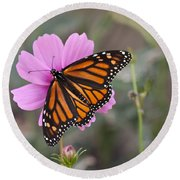 Legend Of The Butterfly - Monarch Butterfly - Casper Wyoming Round Beach Towel