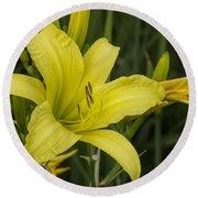 Lemon Yellow Daylily Blossom Round Beach Towel
