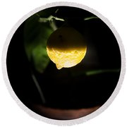 Lemon's Planet Round Beach Towel