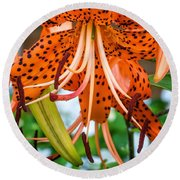 Leopard Lily 2 Round Beach Towel