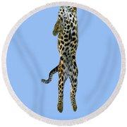Leopard Panthera Pardus Round Beach Towel