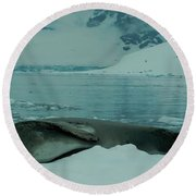 Leopard Seal Hauled Out Round Beach Towel
