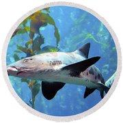 Leopard Shark Round Beach Towel