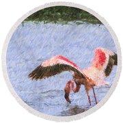 Lesser Flamingo Filter Feeding Lake Nakuru Kenya Round Beach Towel
