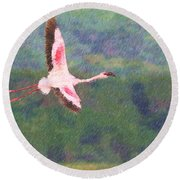 Lesser Flamingo Phoenicopterus Minor Flying Round Beach Towel