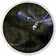 Lessons From Nature 1 - Be Iridescent Round Beach Towel