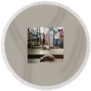 Let Sleeping Dogs Lie Where They May Round Beach Towel
