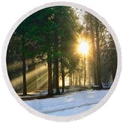 Let There Be Light - Sun Beams Pouring Through A Forest Scene. Round Beach Towel by Jamie Pham