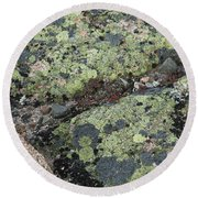 Lichen And Granite Img 6187 Round Beach Towel