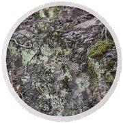 Lichen And Moss Round Beach Towel