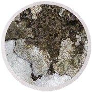 Lichen Mosaic Round Beach Towel