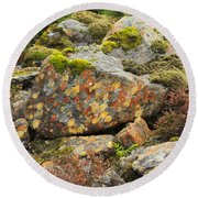 Lichens And Moss In Glen Strathfarrar Round Beach Towel