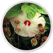 Life And Death In The Garden Round Beach Towel