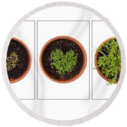 Life Of Cress On White Round Beach Towel