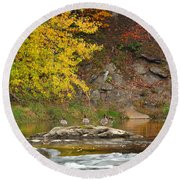 Life On The River Square Round Beach Towel